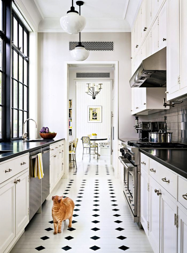 Picture Of stylish and functional narrow kitchen design ideas  5