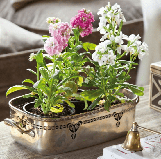 a vintage metal tray with potted blooms is a cool idea for decorating your coffee table