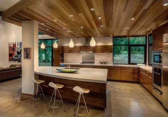 Marvelous Stylish And Atmospheric Mid Century Modern Kitchen Designs Photo