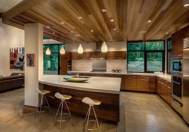 Picture Of stylish andatmospheric mid century modern kitchen designs  19
