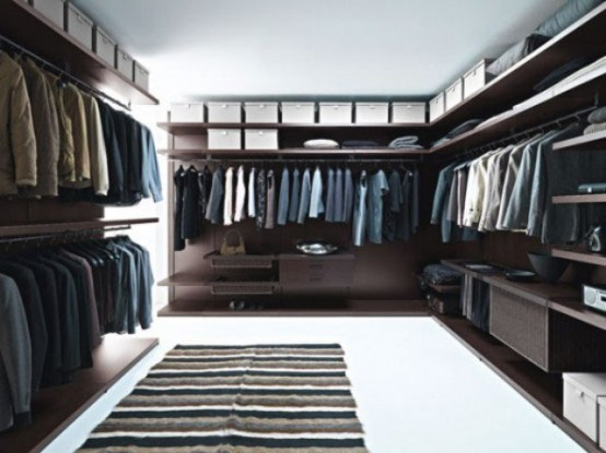 Stylish Masculine Closet Designs