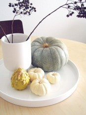 a modern Thanksgiving decoration with a white tray, a white vase with dried herbs and natural pumpkins and gourds