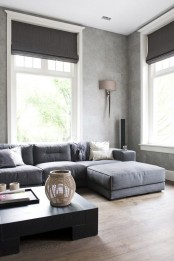 graphite grey Roman shades highlight the color scheme of the room and block the sun out very well