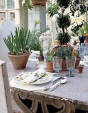 potted succulents, greenery topiaries and spring bulbs in planters for a spring centerpiece