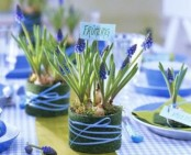 spring bulbs in pots wrapped with moss are great for centerpieces