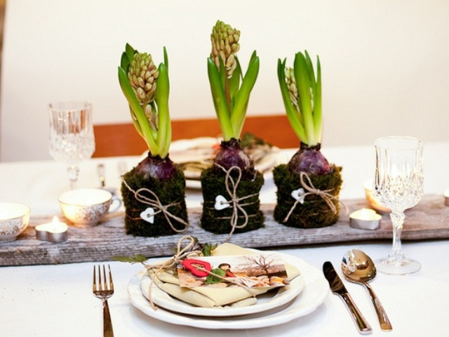 spring bulbs wrapped with moss and placed on a wooden plank