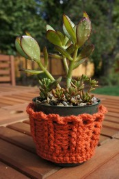 Sweet Furniture And Accessory Cozies