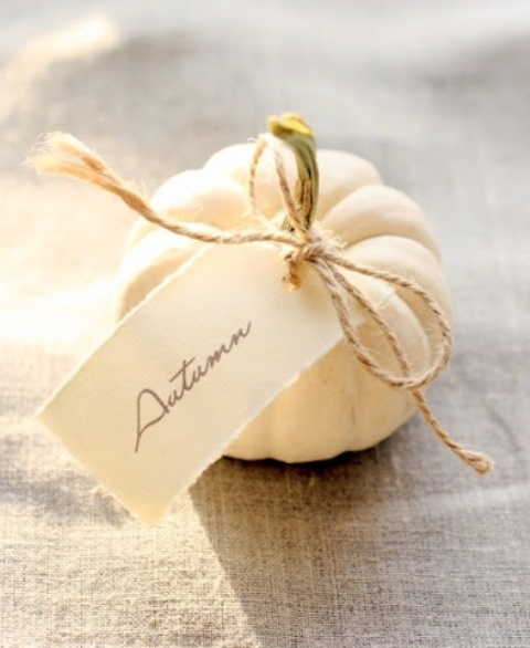 a white pumpkin and a white card are nice for decorating your space for Thanksgiving
