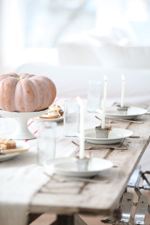 35 Tender White Thanksgiving Décor Ideas