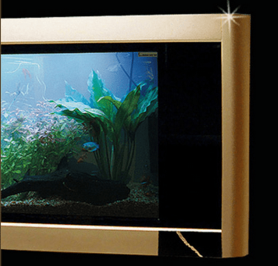 The Most Expensive Aquarium