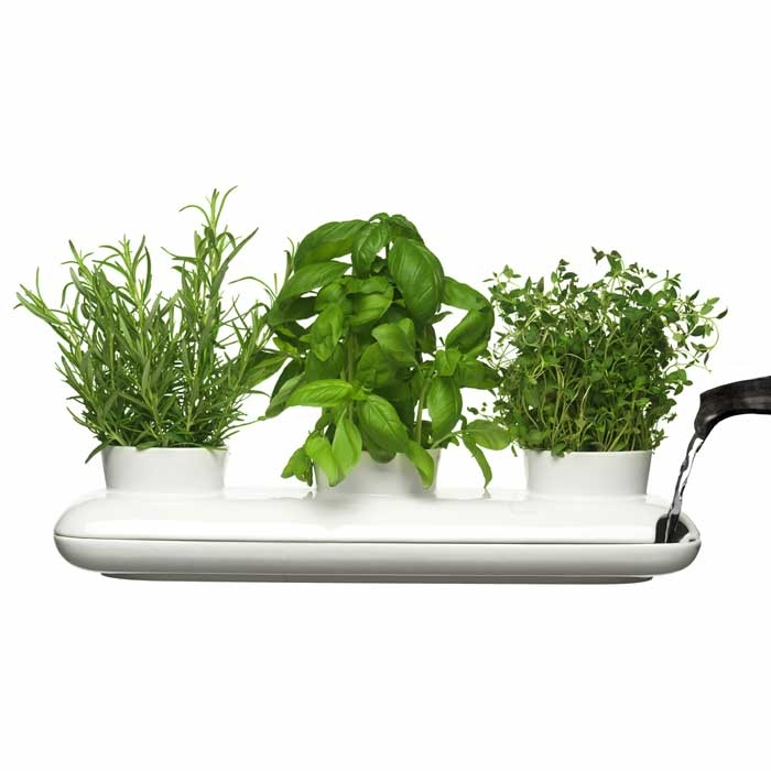 sagaform 39 s trio herb pot contemporary way to grow fresh herbs at home digsdigs. Black Bedroom Furniture Sets. Home Design Ideas