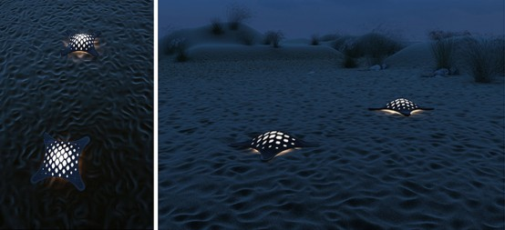 Turtle Solar Lighting For Modern Outdoor Spaces