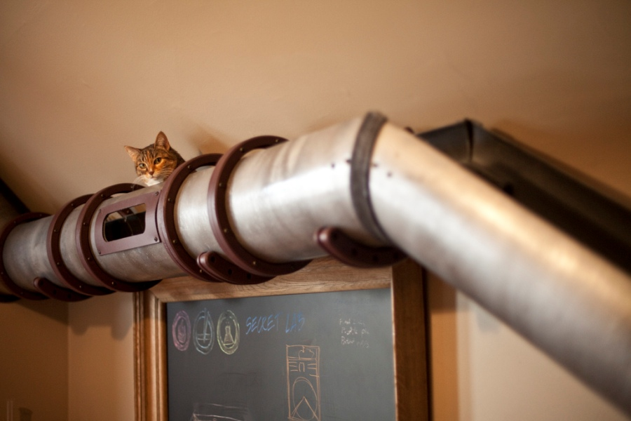 Unique Cat Tunnel In Steampunk Style Right At A Home