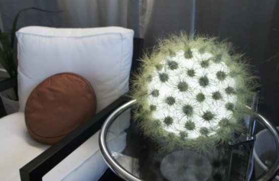 a fluffy ball table lamp in green reminds of a unique cactus on your table is a cool and bold light idea