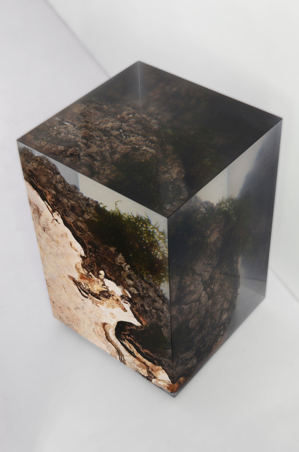 Picture Of unique furniture made of real wood and stones  11