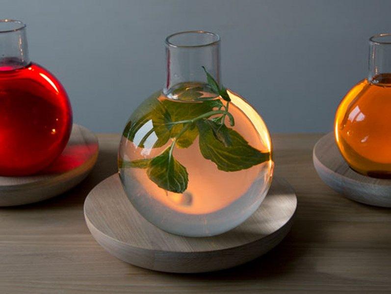 Unusual Liquid Light As A Still Life Reinterpretation