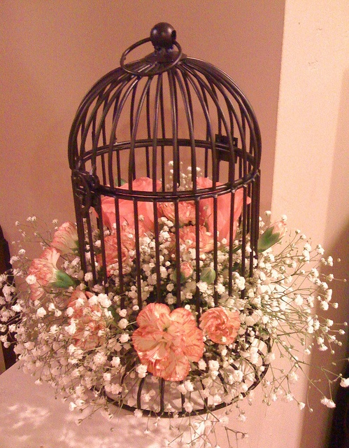 Using bird cages for decor beautiful ideas digsdigs