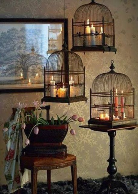 Several bird cages and bunch of candles could provide enough lighting for a romantic dinner.