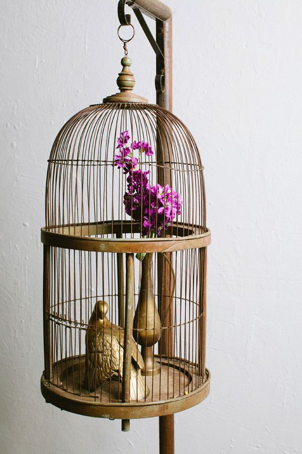 using bird cages for decor 46 beautiful ideas digsdigs On bird home decor