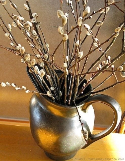 a vintage jug with willow is a cool rustic and vintage decoration for spring