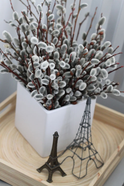 a square porcelain pot with willow is a nice and modern idea to decorate your home for spring