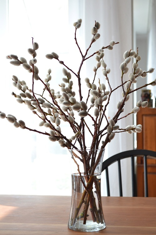 a clear glass vase with willow is a fresh and natural spring decoration or centerpiece