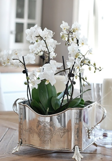 Winter Decor Hit Stylish Silver Accessories