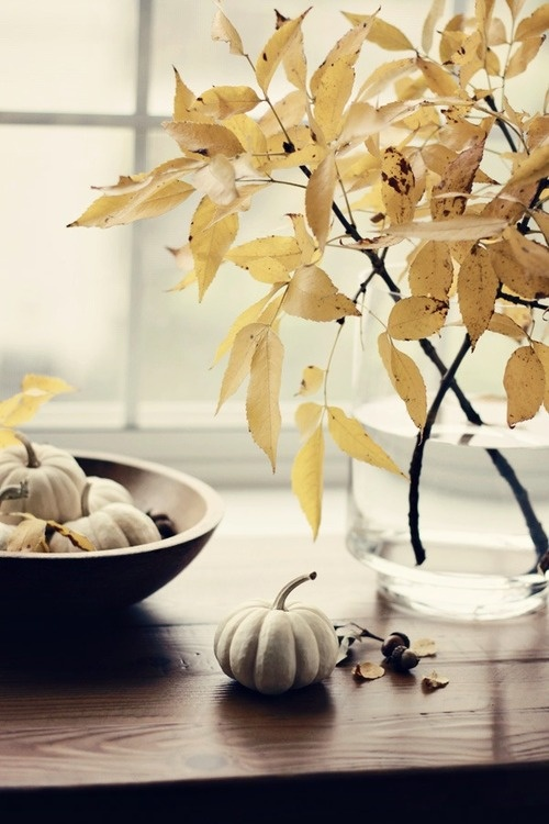 beautiful branches with yellow leaves in a large clear jar is a stylish idea for the fall and a slight touch of color