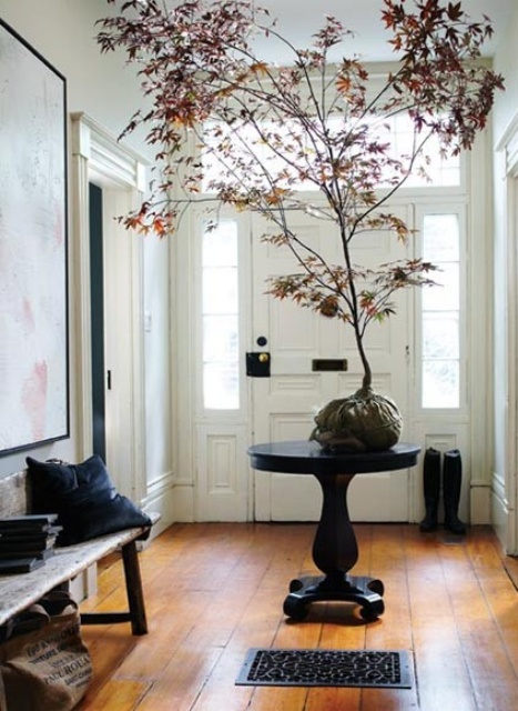 a rock with a whole tree with bold leaves attached is a cool entryway decoration for the fall