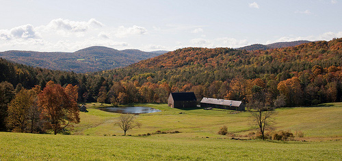 Woodstock Farm